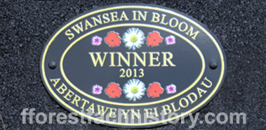 2013 Swansea in Bloom winner